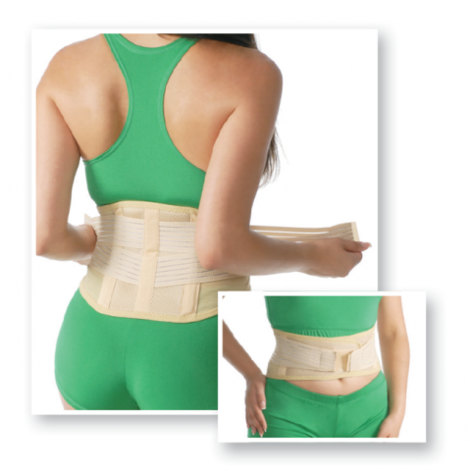 Sacro Lumbar Support Facilitated (20 cm)